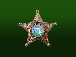 Hernando County Sheriff Shield_20100407155105_JPG