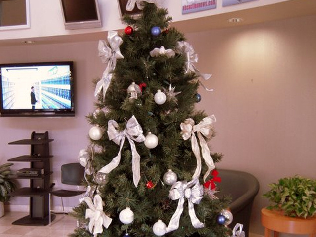 Angel Tree 640x480_20101122155528_JPG