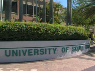 USF University of South Florida