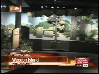 Weedon Island Preserve Educational Center