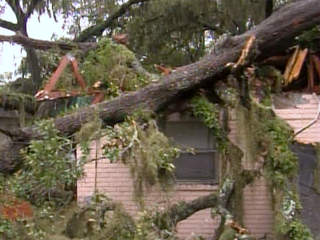 Tropical Storm Debby: Tornado ravages Polk County