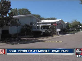 Residents struggle with smell from sewer