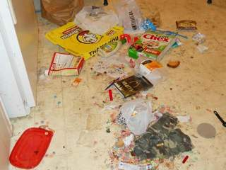 sarasota county toddlers found amid dirty diapers, blood riddled