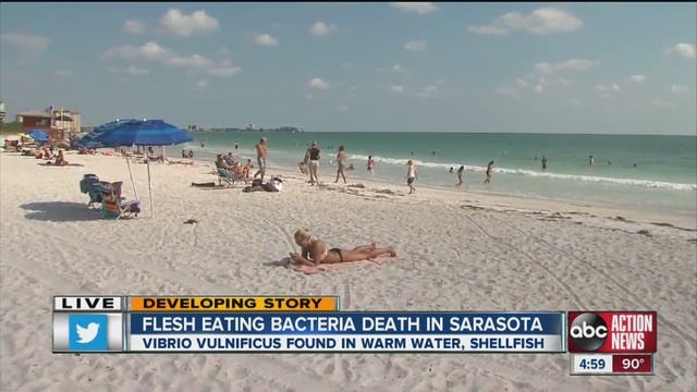 Flesh Eating Bacteria In Florida Beaches