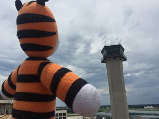 Stuffed tiger goes on wild adventure at airport