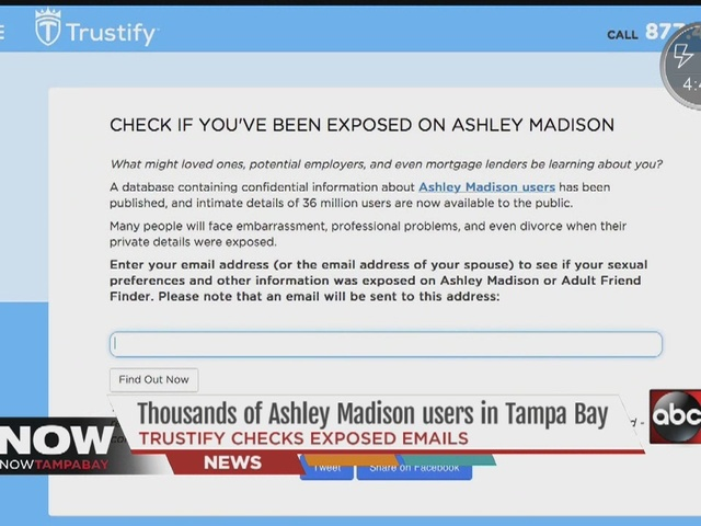 story ashley madison user list search emails names