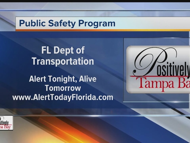 Positively Tampa Bay: Roadway Safety #3