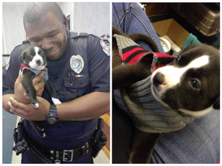 Cop responds to animal shelter call, adopts dog