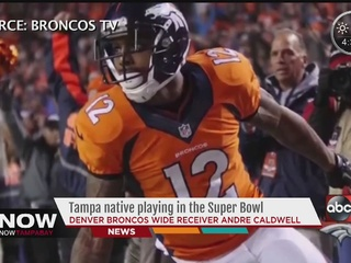 Tampa native playing in the Super Bowl 50