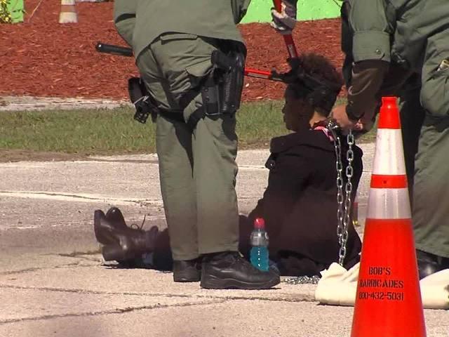 Black Lives Matter protest leads to arrests