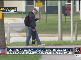 Grant to help keep pedestrians safe at USF