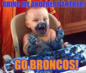 The best memes from Super Bowl 50