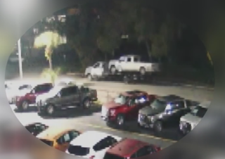 Sarasota thieves take truck right off dealer lot