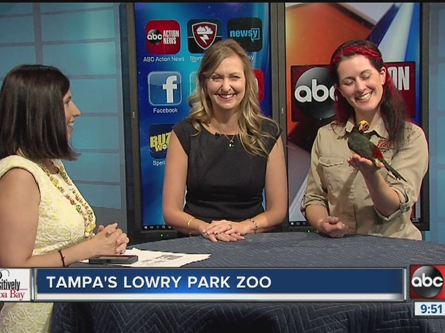 Positively Tampa Bay: Tampa's Lowry Park Zoo