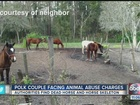 Couple charged with animal cruelty to horses