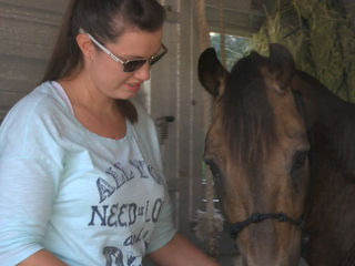 Fla. family reunited with horse 16 years later