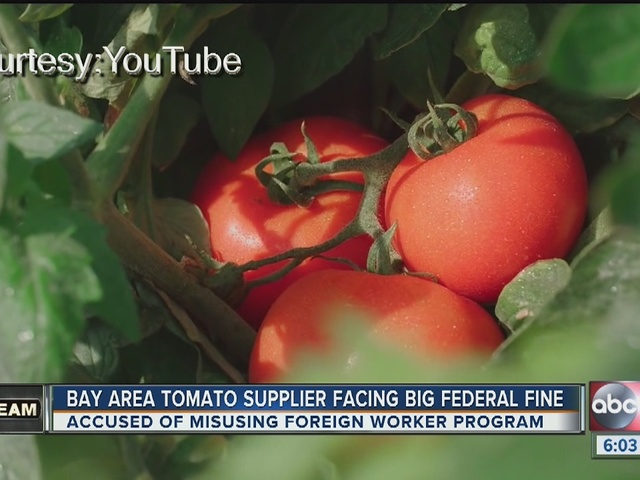 I-Team: Tampa Bay area farm under fire