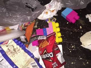 Winter Haven kids found in deplorable conditions