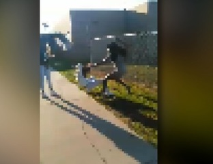 Students, parents speak out after school brawl