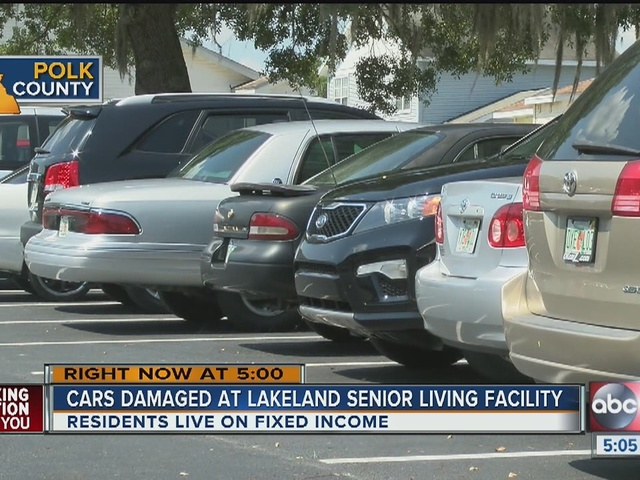 Seniors discover smashed car windows on Memorial Day, seek help from…