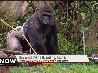 Family wants donations to go to Cincinnati Zoo