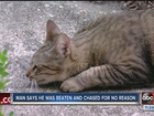Polk County men attacked while searching for pet