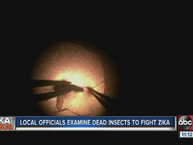 6th case of Zika virus confirmed in S. Korea