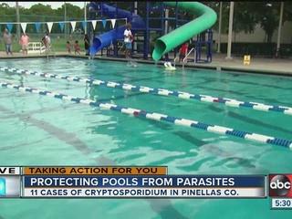 How public pools protect against parasites