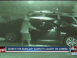 20 cars burglarized overnight in Wesley Chapel