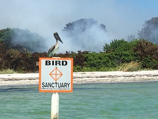 Egmont Key fire 50 percent contained