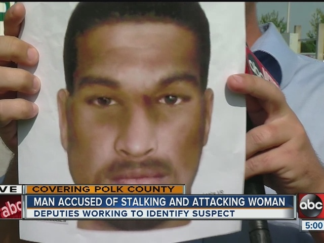 Polk deputies searching for woman's attacker