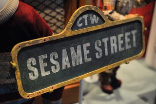 'Sesame Street' longtime cast member changes