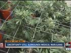 Uncertainty still surrounds medical marijuana