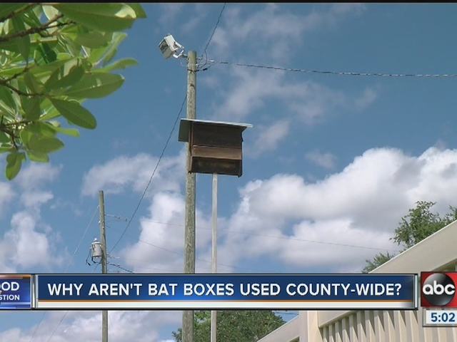 Why aren't bat boxed used county-wide?