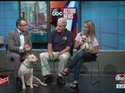 Aug. 27 Rescues in Action: Meet Rose and Cruz
