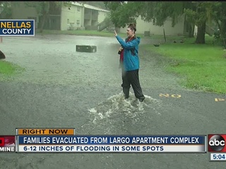 WATCH | TS Hermine causes problems in Tampa Bay