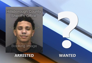 Handcuffed suspect flees from traffic stop