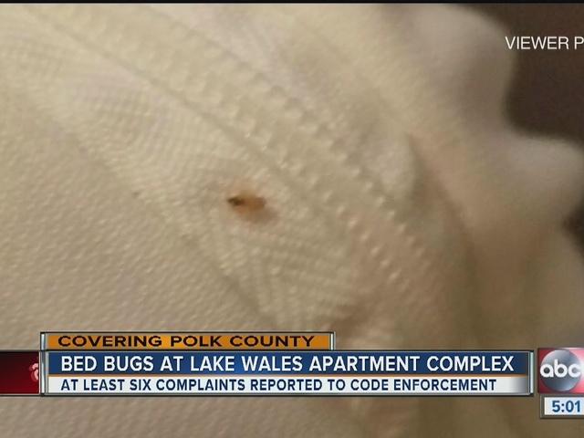 Lake Wales Gardens Apartments