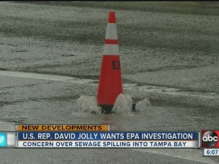 Pinellas legislators dissect sewage problems