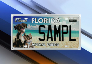 New Fla. 'Animal Friend' license plate released
