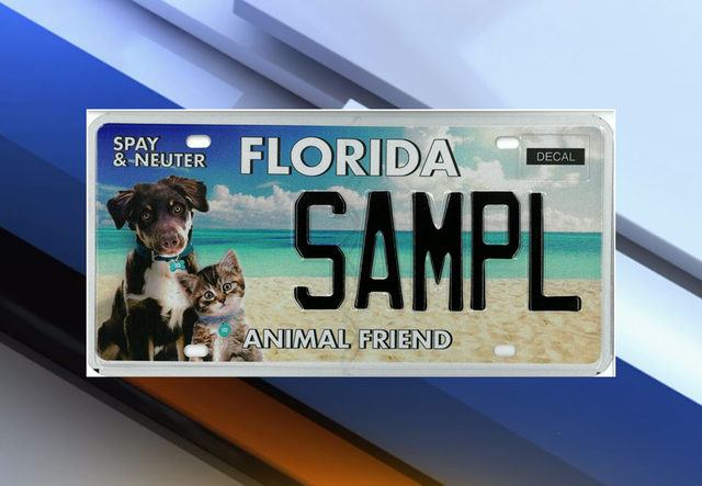 New Florida 39 Animal Friend 39 Specialty License Plate