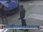Expensive Corvette stolen from dealership