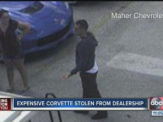 Expensive Corvette stolen from dealership