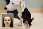 Woman arrested on animal cruelty charges