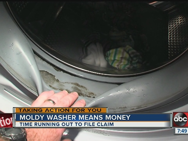 Moldy washers could bring you money