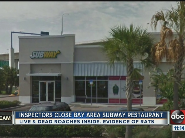 Dirty Dining: Subway temporarily shuts down for rats and roaches near…