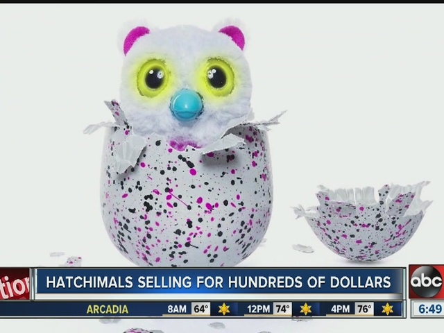 Hatchimals selling for hundreds of dollars