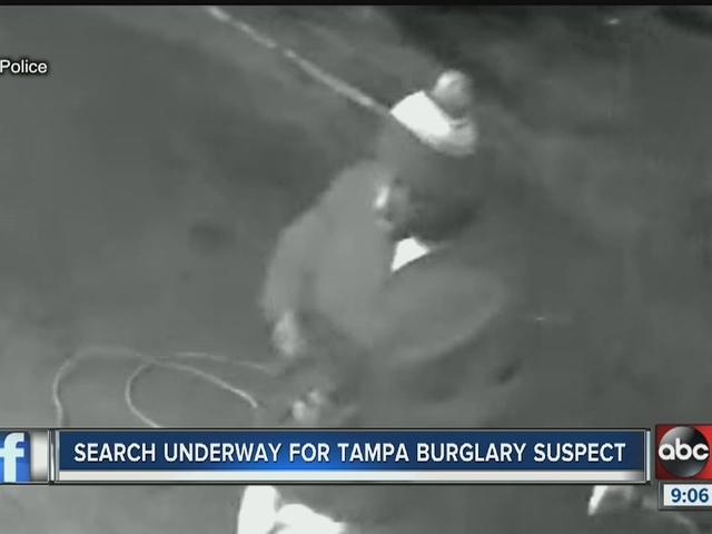 Search underway for Tampa burglary suspect