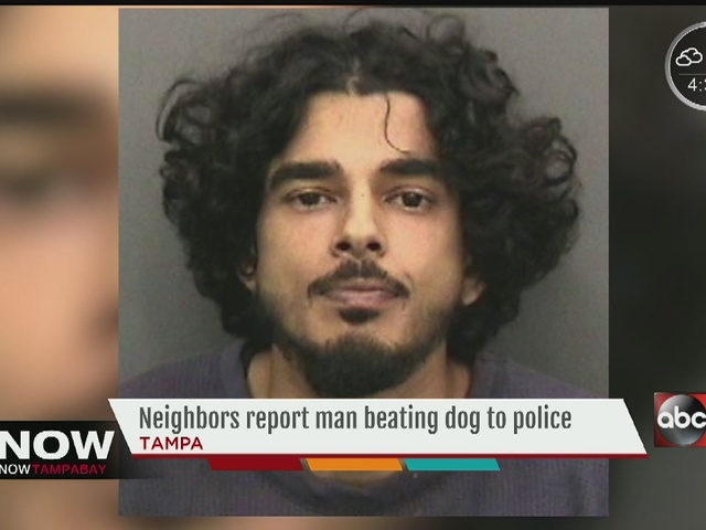 Tampa man jailed, accused of repeatedly beating dog with metal pole