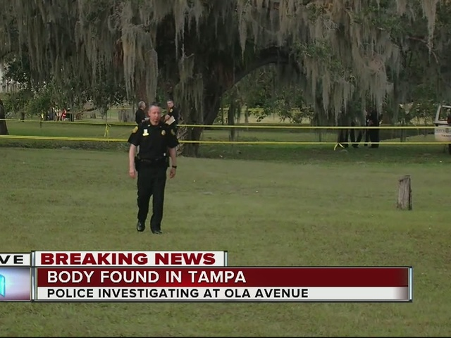 Body found in a ditch in Forest Hills